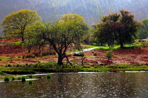 بارش83 میلی متری باران در یاسوج، بارشها ادامه دارد